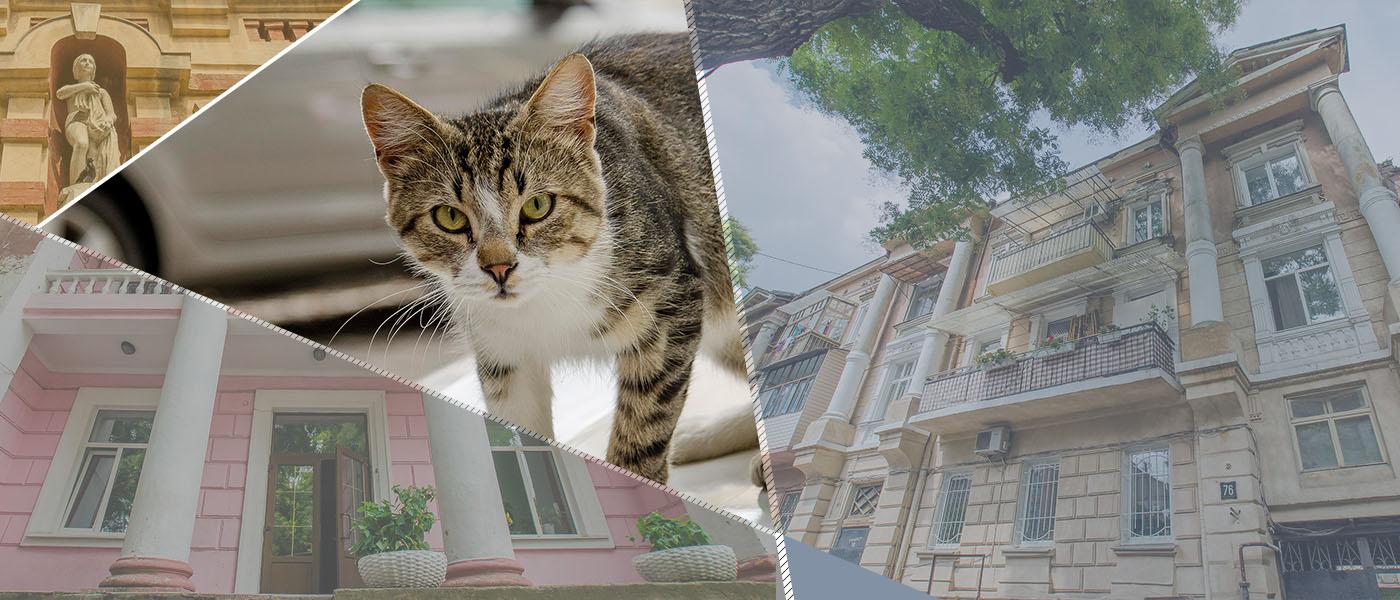 Треугольник уличных переименований: в честь кого в старой Одессе улицы называли