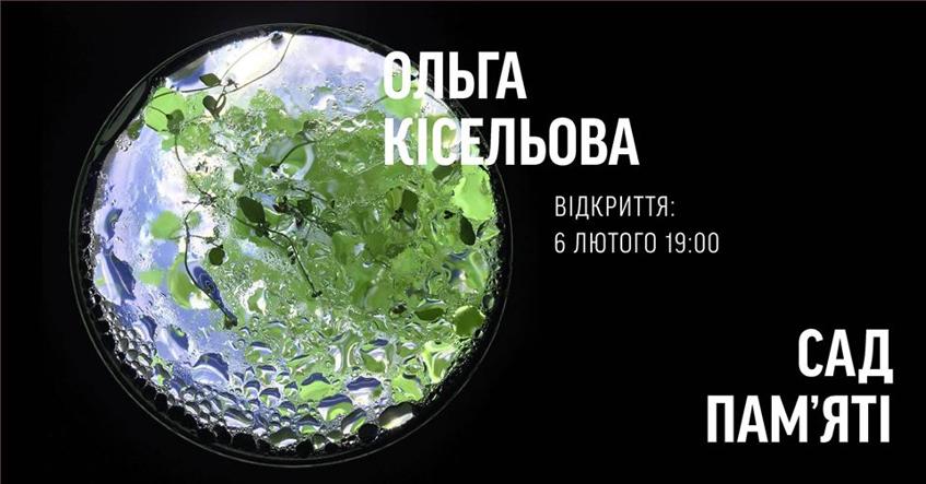 Митецький лютий-2020: гід українськими виставками