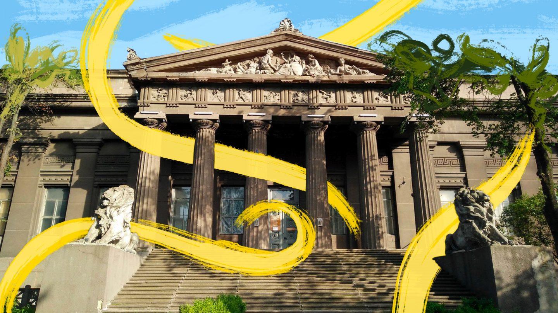 После карантина Национальный художественный музей (UA)