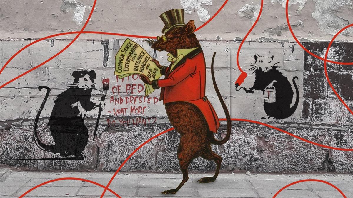 Вредитель или любимец: крыса в европейской культуре (UA)