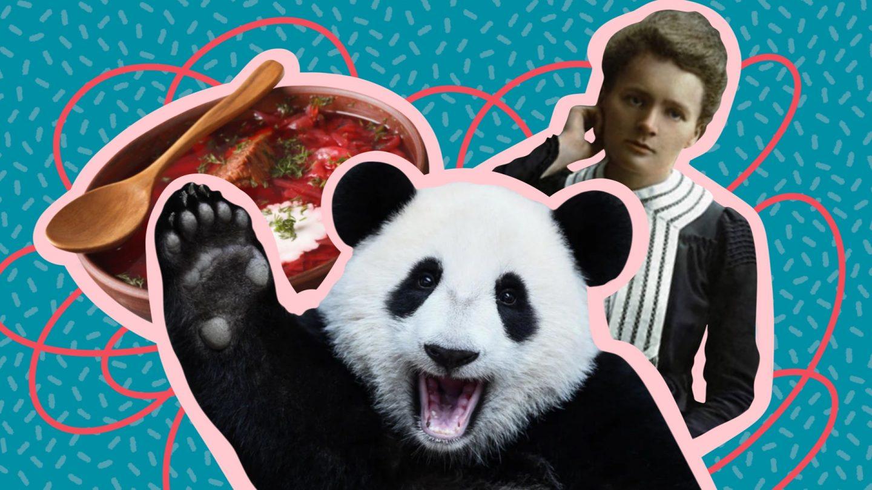 Публичная дипломатия: панды, борщ и «мягкая сила»