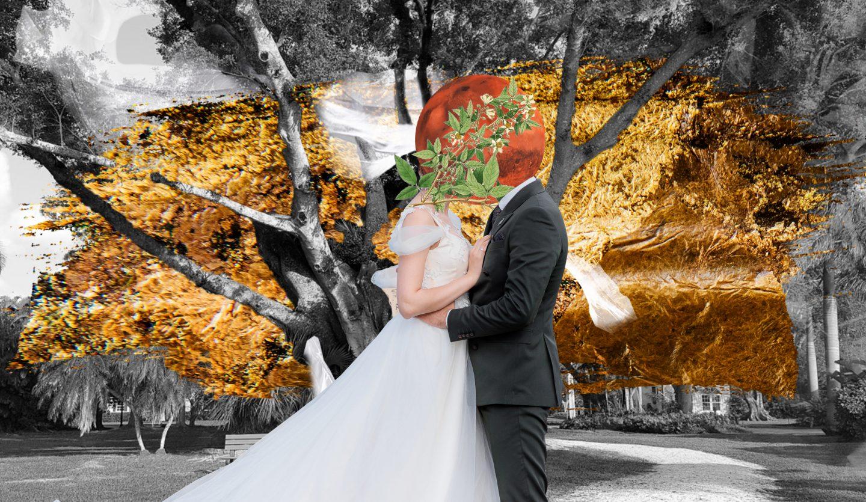 Браки с деревьями: древняя традиция и человеческая изобретательность