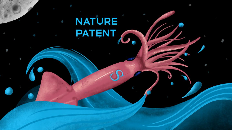 От махолетов до нанотехнологий: изобретения, вдохновленные природой