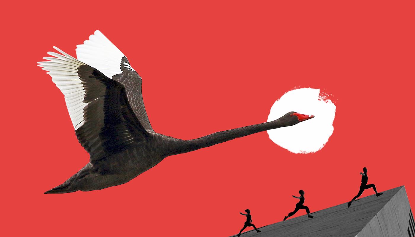 «Черный лебедь» и не только: как принимать решения в условиях неопределенности